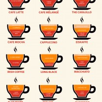 the barista's complete guide to coffee