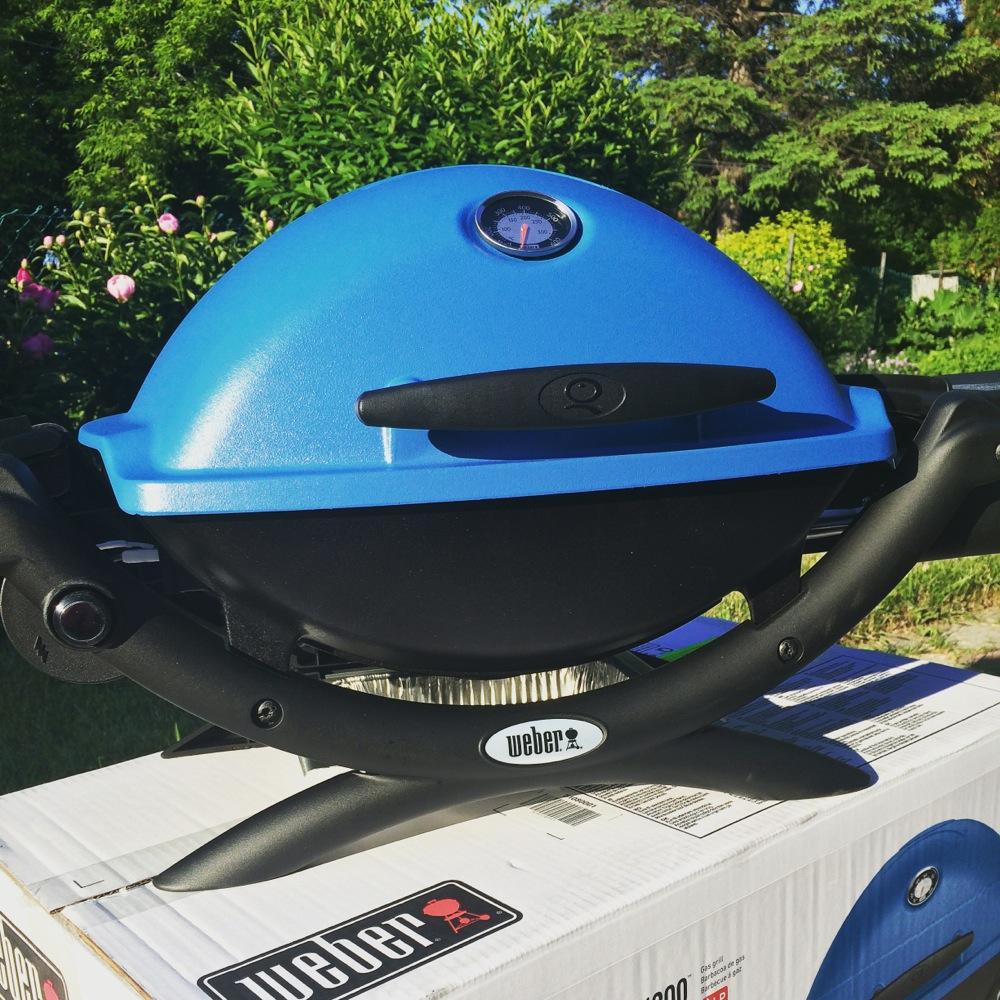 Weber Q1200 Bbq Gadget Review Qincolour